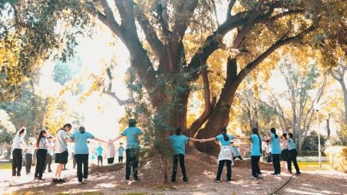 2019_kulturpark sanat ve ekoloji bulusmaları1
