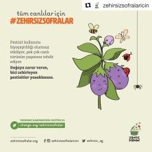 2019_zehirsiz sofralar agi4